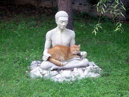 Картинки по запросу Кошки Под защитой богов