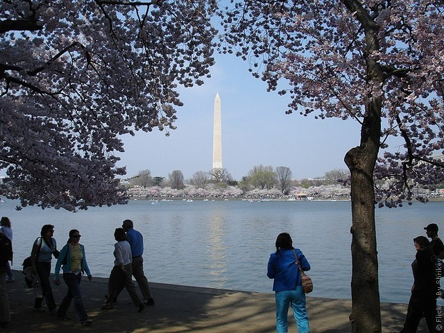 monument-washington-06
