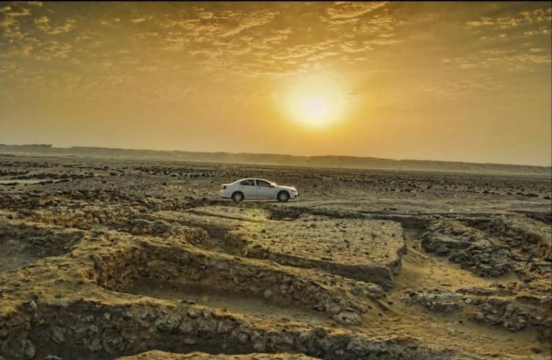 Дорога к Дереву жизни в Бахрейне. Фото