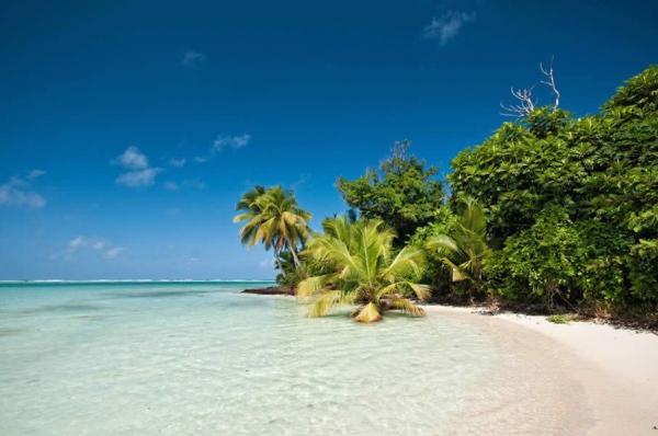 Мадагаскар – страна Лемурия