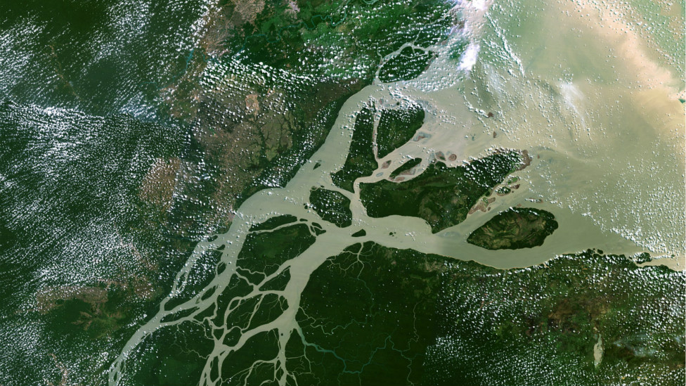 Дельта реки Амазонка, снимок со спутника