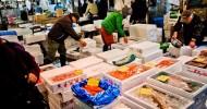 Рыбный рынок Цукидзи в Токио, Япония