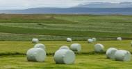Фотоотчет Исландия: В поисках неизведанного