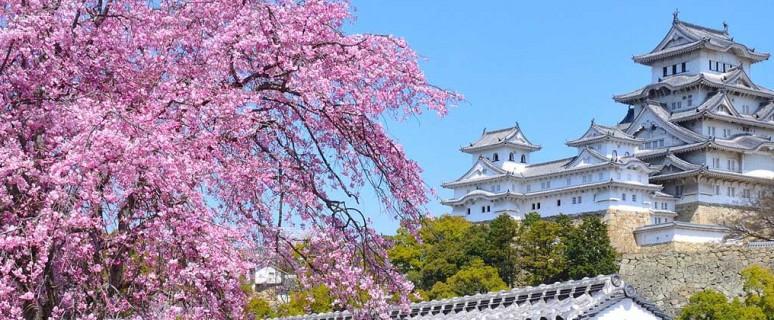 1361980048_himeji_castle5