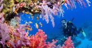 7 природных чудес Австралии