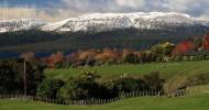 Гора Таравера