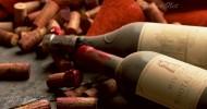 Настоящее французское вино делают в Чили