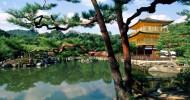 9 вещей, которые стоит сделать в Японии