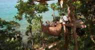 "Ресторан на дереве ""Птичье гнездо"", Таиланд (7 фото)"