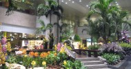 Аэропорт Чанги (Сингапур) фото и описание аэропорта
