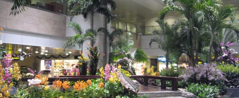 changi-airport-112