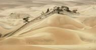 Пустыня Наска в Перу, рисунки и фото.