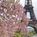 paris-photo
