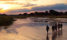 south-luangwa-national-park