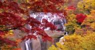 Водопад Фукурода в Японии — ФОТО