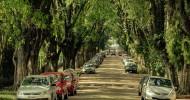 Улица Руа Гонсалу де Карвальо в Бразилии