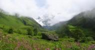 Долина Цветов — национальный парк в Гималаях
