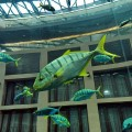 Sealife Aquariumlift