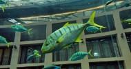 Цилиндрический аквариум в Берлинском отеле Radisson Blu  (13 фото)