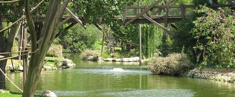 Bibleyskiy-zoopark-Ierusa