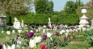 Сад Тюильри в Париже, Франция
