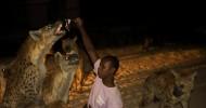 Гиены и другие питомцы: о буднях нигерийских укротителей