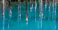 Голубой пруд Биэй на острове Хоккайдо, Япония (24 фото)