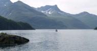 Ледник Свартисен, Норвегия