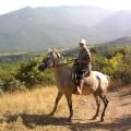 конная-прогулка-Крым[1]