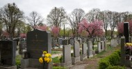 Центральное кладбище в Вене, Австрия