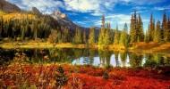 Национальный парк Маунт-Рейнир в США