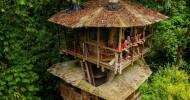 Усадьба Беллависта: эко-поселение среди ветвей