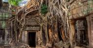 Наш безумный трип: Тайланд,Камбоджа,Вьетнам Часть 2