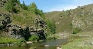 Настоящая река Лимпопо и сказочное дерево.