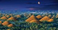 Шоколадные холмы на Бохоле (Филиппины) — 18 фото
