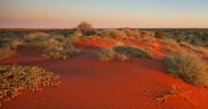 Пустыня Симпсона в Австралии — ФОТО