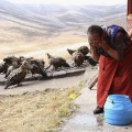 Tibetan Celestial Burial Tradition