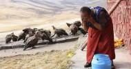 Небесное погребение в Тибете (слабонервным не смотреть!) 16+