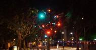 Светофорное дерево в Англии