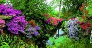 Сад Боднант, фото и история сада Боднант в Уэльсе
