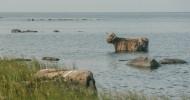 Остров Абрука в Эстонии
