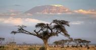 Вулкан Килиманджаро, координаты на карте и фото вулкана
