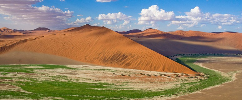 Namib_Naukluft_National_Park_013
