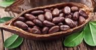 Что собой представляют семена какао