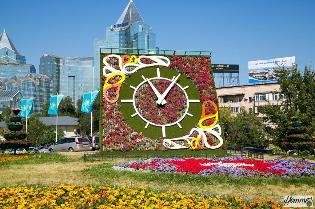 Обилие цветов на улицах города Алматы