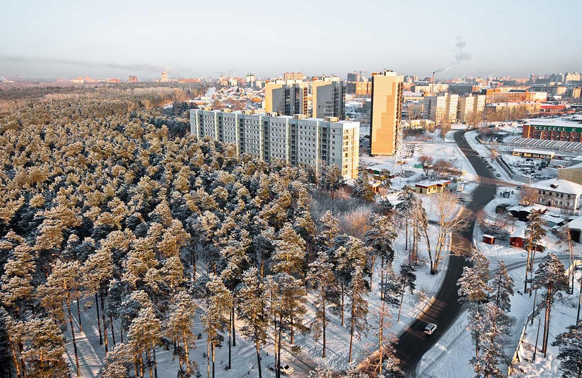 Заельцовский парк в Новосибирске зимой