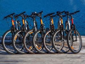 Любите велосипеды?