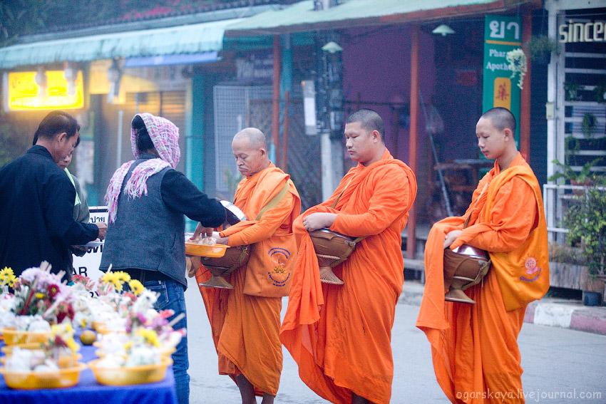 Сбор подаяния монахов в Таиланде