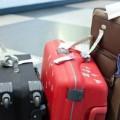 чемоданы для путешествия
