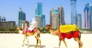 ОАЭ — идеальное место для отдыха!